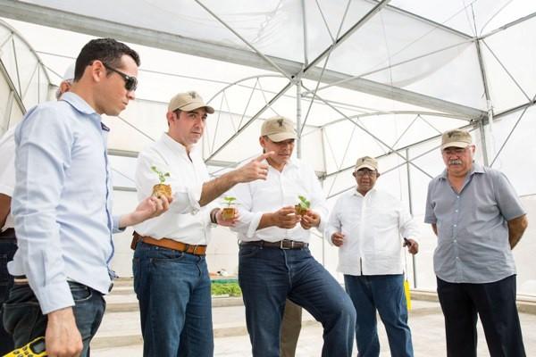 Gobernador vivista invernadero maya vegetales del Grupo La Anita