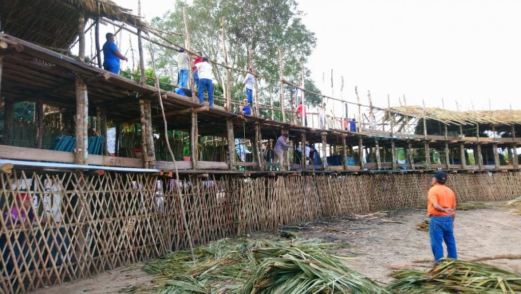 En Tizimín hay madera y huano para 40 cosos taurinos