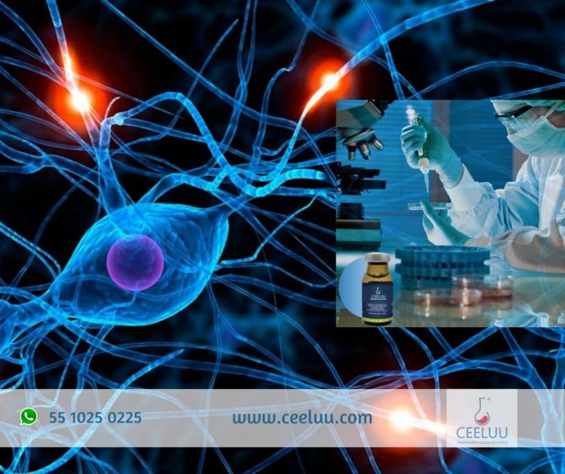 Cada vez más pacientes prefieren tratamientos con células madre