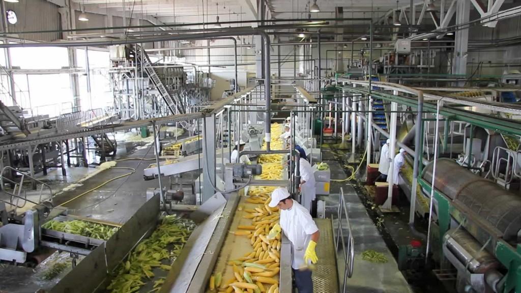 Reconocen que ha sido mínimo el recorte de persona en industria alimenticia