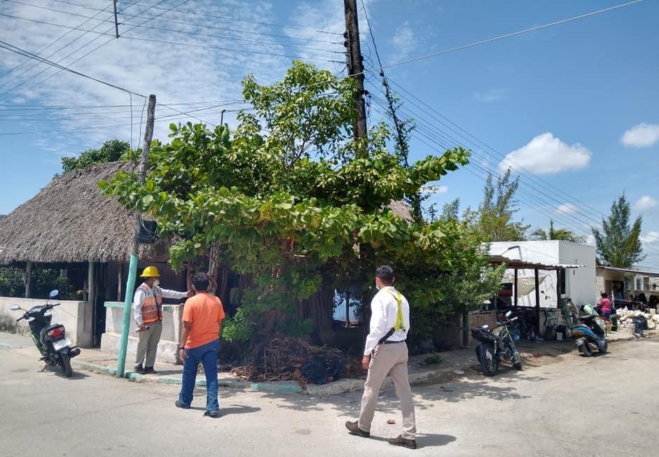 Cfe reemplazará postes de luz en Rio Lagartos