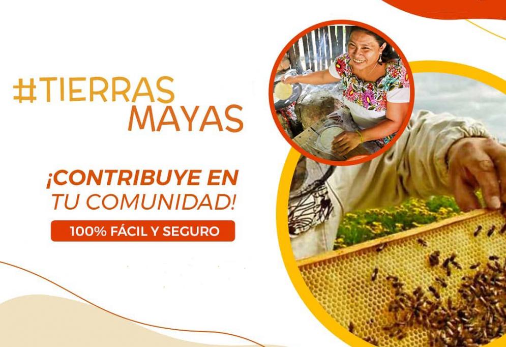 Con #TierrasMayas apoya en línea a 15 organizaciones rurales